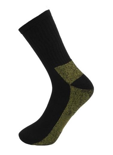Panthzer  Coolmax Sport Socks Haki/Gri Renkli